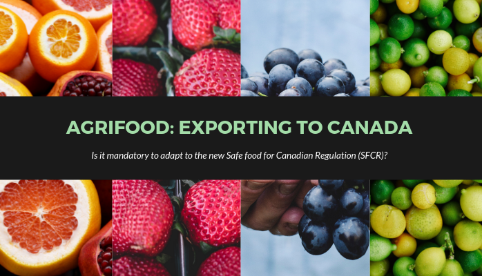 Food Export in Canada: is it mandatory to adapt to the new Safe food for Canadian Regulations (SFCR)?